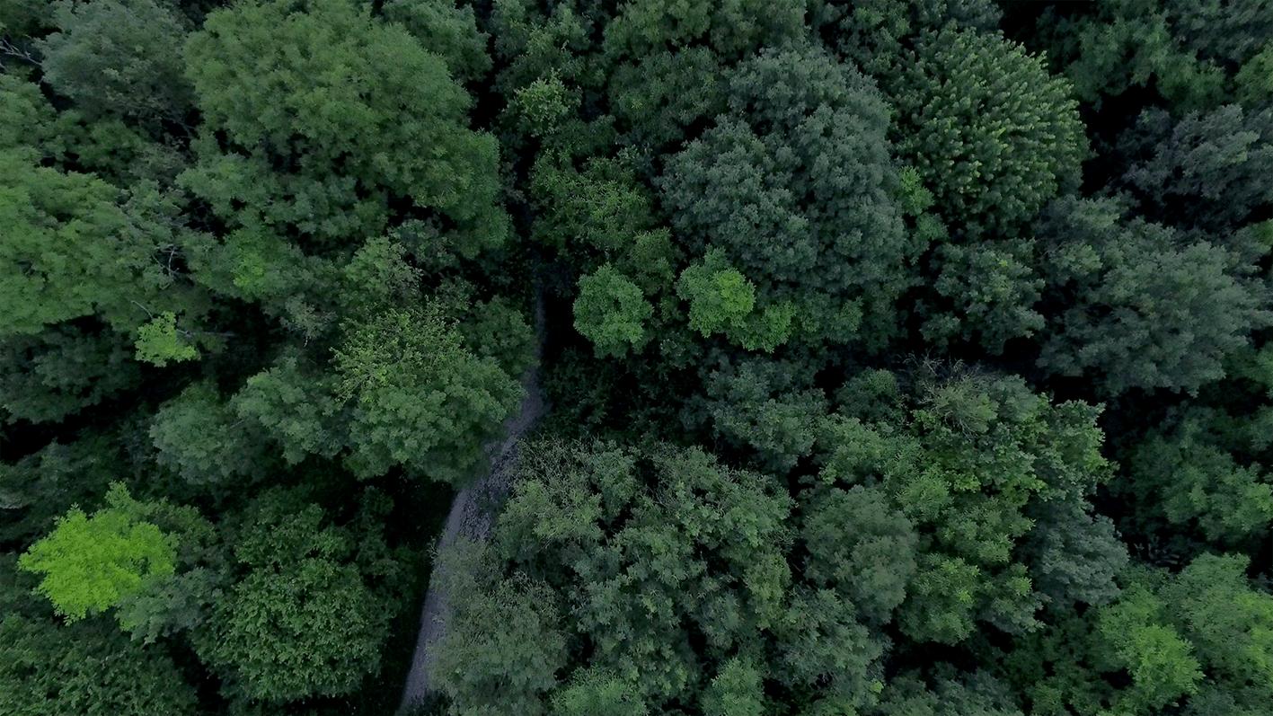 drone, vueaerienne, drone77, videodrone,dronefilm, droneinspire, dji,