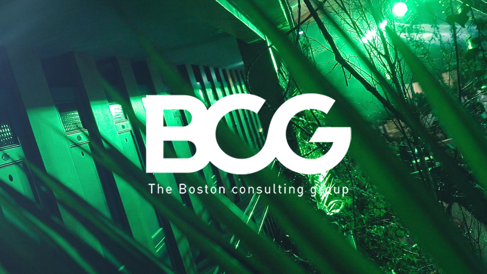 BCG, bostonconsultinggroup, evenemententreprise, soireeentreprise, videosoireeentreprise, videomolitor, videosoireejungle, jungleevenement, BCGevenementvideo, bostonconsultinggroupevideo, parisevenementvideo, cubriks, theodeffaux,